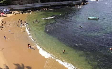 Cá dạt hàng loạt về Mexico do động đất Nhật 20110314102741_c6