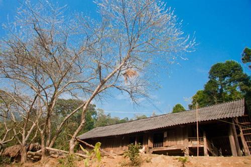 Coi Hamlet Xuan Son National Park