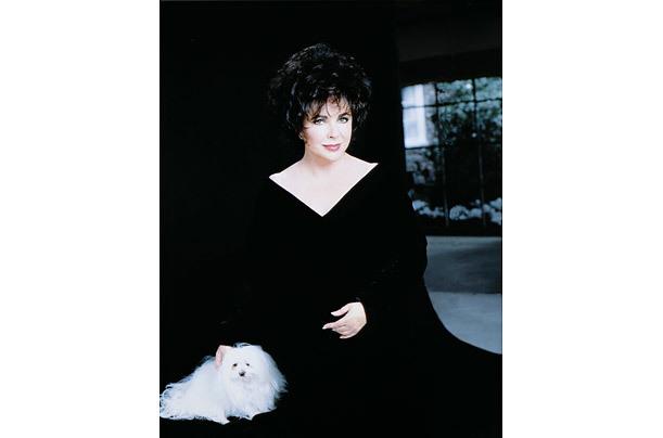 Elizabeth Taylor -một vẻ đẹp huyền thoại- 20110324121153_14