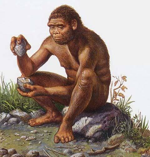 Nguồn gốc loài người -