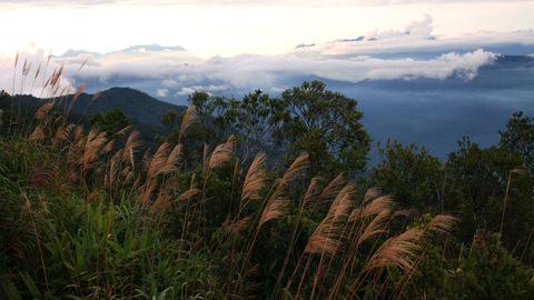 http://imgs.vietnamnet.vn/Images/2011/05/13/16/20110513163154_Ba-Na-7.jpg