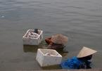 Những phụ nữ ngụp lặn dưới Hồ Tây
