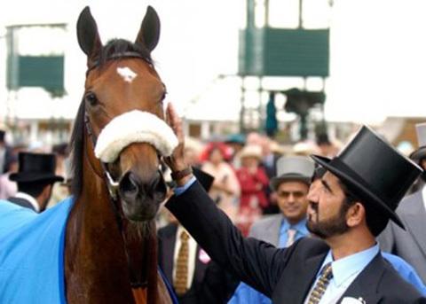 Sheikh Mohammed tại chuồng ngựa thuần của mình.