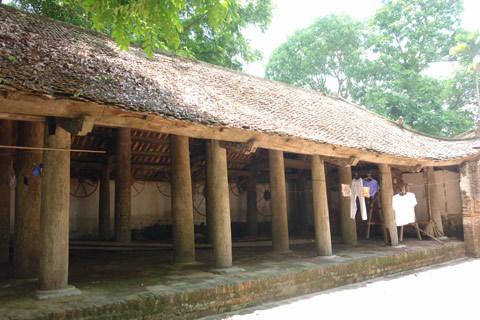 Xã hội - Cuộc chiến giữ… 'cây vàng' trong ngôi đền cổ (Kỳ 2) (Hình 4).
