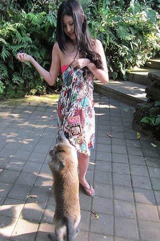 """Choáng: Người đẹp bị khỉ sờ ngực vì tưởng là """"trái dừa"""""""