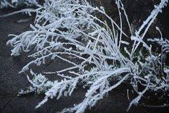 Xem băng tuyết phủ trắng trên đỉnh Mẫu Sơn
