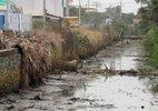 Dòng kênh thối khiến 2 tỉnh tốn hơn 700 tỷ