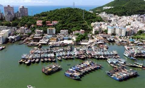 Bộ Ngoại giao nói về việc TQ 'xua' tàu cá ra Biển Đông