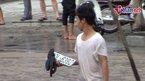 Đi mò biển số ôtô ngày Hà Nội ngập