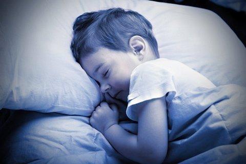 Con người có thể học khi đang ngủ