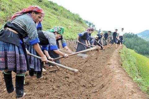 Đẹp ngỡ ngàng những thửa ruộng bậc thang - Kỹ Năng Việt | Pro.edu.vn 13