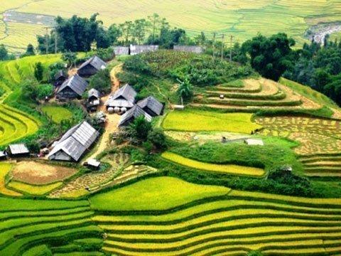 Đẹp ngỡ ngàng những thửa ruộng bậc thang - Kỹ Năng Việt | Pro.edu.vn 20