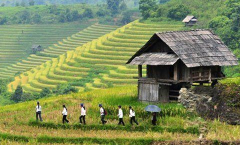 Đẹp ngỡ ngàng những thửa ruộng bậc thang - Kỹ Năng Việt | Pro.edu.vn 22