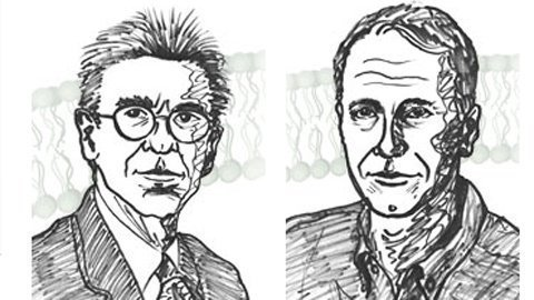 Mỹ độc chiếm giải Nobel Hóa học 2012