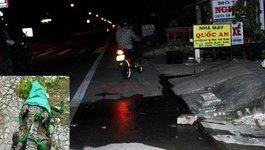 Đánh chết cá sấu sổng chuồng bò lên quốc lộ 1A