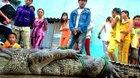 Rộ tin đồn cá sấu nổi trên sông