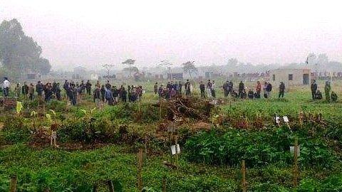 Nhiều ngôi mộ bị đào trộm ở Hà Nội