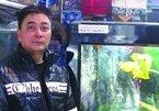 'Dân chơi' Hải Phòng kể thú chơi cá rồng nghìn đô