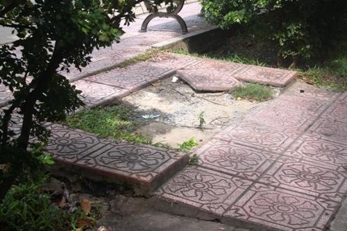 'Bẫy' nguy hiểm bên dòng kênh đẹp nhất Sài Gòn - 7