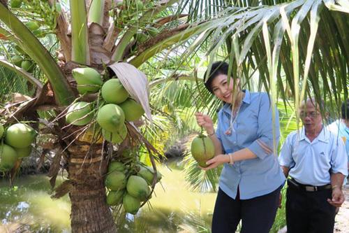 Thái Lan, Thủ tướng, Yingluck Shinawatra, facebook