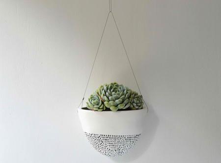 Ý tưởng trang trí nhà cực xinh với chậu hoa treo tường độc đáo