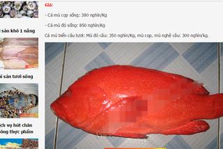 Nhà giàu Hà Thành tẩm bổ cá mú đỏ 1 triệu/kg