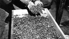 Tìm thấy đoàn tàu ma chứa kho báu của Hitler