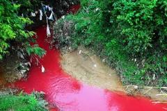 Xuất hiện dòng suối 'máu' bất thường ở Điện Biên