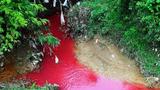 Vì sao có dòng sông máu ?