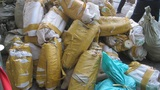 Hơn 5 tấn ngà voi, vảy tê tê bị bắt giữ tại cảng Tiên Sa