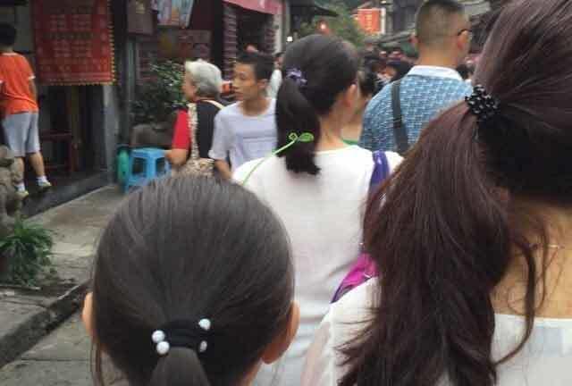 Bắc Kinh, trào lưu, cây
