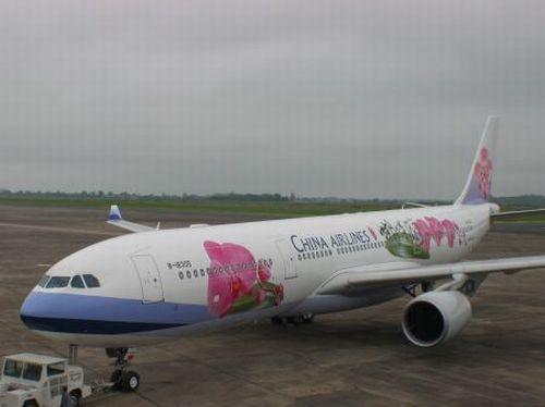 Xe đâm vào bụng máy bay, 300 hành khách bị hủy chuyển