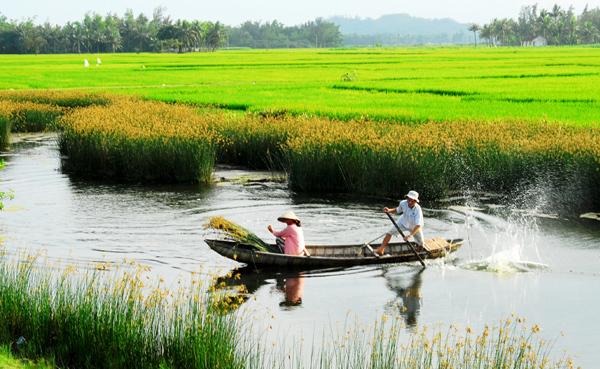 Việt Nam đang cần thêm một 'Khoán 10'