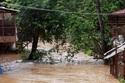 El Nino cường độ kỷ lục, 6-7 cơn bão cuối năm