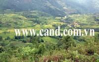Thông tin mới vụ đôi nam nữ bị sát hại ở Lào Cai