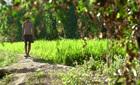 Phim Việt được chờ đợi nhất mùa Thu lộ diện