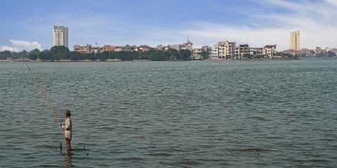 Bí mật 'mỏ' cá khổng lồ hàng trăm năm giữa Hà Nội