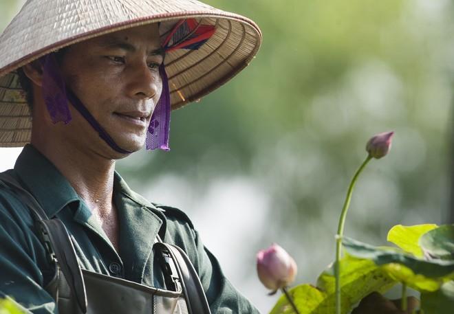 'Tay chơi' Hà Thành: Ông chủ đầm sen 12 loại quý hiếm