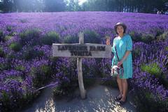 Mẹ Việt kể chuyện phơi đồ khoa học ở Nhật Bản