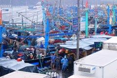 Đã tiếp cận được tàu cá chở 13 người trôi dạt trên biển