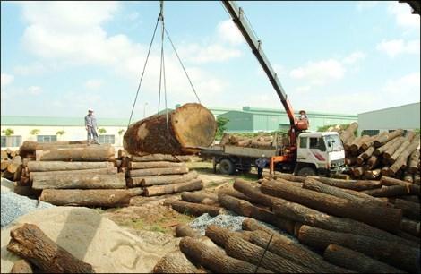 Xuất khẩu gỗ, Trung Quốc, hải quan, trốn thuế, doanh nghiệp, giảm thuế, chênh lệch số liệu, tỉ giá, xuất-khẩu-gỗ, Trung-Quốc, hải-quan, trốn-thuế, doanh-nghiệp, giảm-thuế, chênh-lệch-số-liệu, tỉ-giá