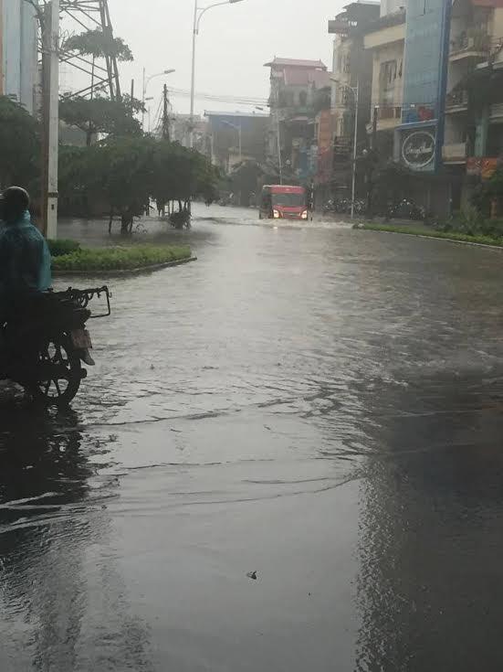 mưa, mưa lớn, lụt, ngập, cây đổ, tắc đường, Hà Nội