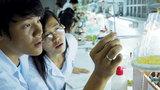 Việt Nam vượt Thái Lan về đổi mới sáng tạo