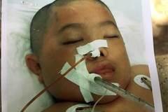 Tia hy vọng của cậu bé sốt xuất huyết nặng