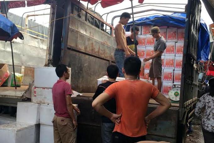 Phá cỗ Trung thu: Đãi trẻ em 100 tấn hồng Tàu/ngày