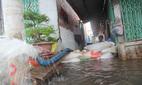 TPHCM chi 950 tỷ đồng xây 3 hồ tiêu nước chống ngập
