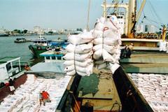 25 năm ta say sưa, giờ Campuchia 'qua mặt' về gạo