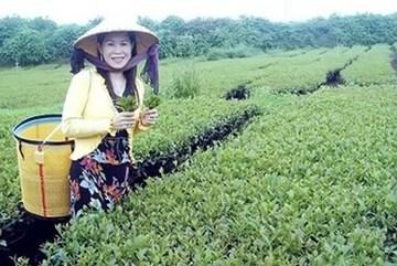 Vụ bà Hà Linh bị giết: Gia đình chỉ nhìn được mặt nạn nhân