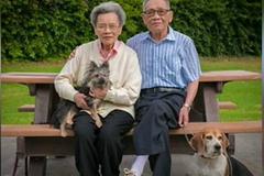 Mỹ: Cụ già gốc Việt bị đánh tới xuất huyết não