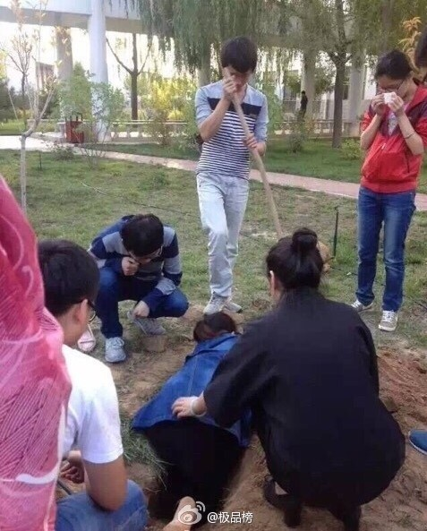 Sinh viên cứu sống đàn chó bị chôn sống gây tranh cãi